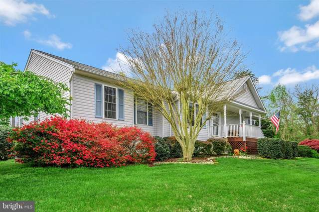 15502 Wynd Court, MINERAL, VA 23117 (#VASP230004) :: Dart Homes