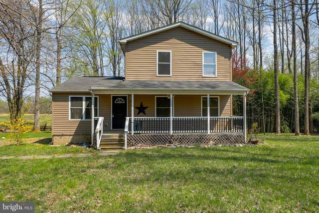 6735 Tapps Ford Road, AMISSVILLE, VA 20106 (#VAFQ169774) :: SURE Sales Group