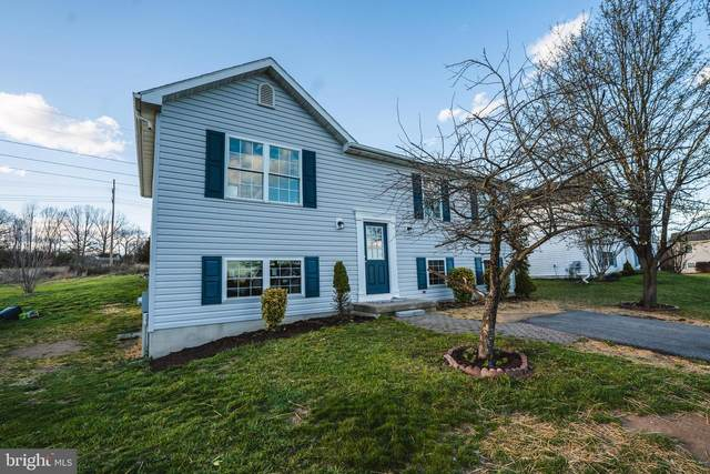 32 Jupiter Court, MARTINSBURG, WV 25404 (#WVBE184814) :: Shawn Little Team of Garceau Realty