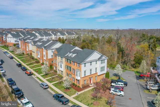 23118 Sunbury Street, ASHBURN, VA 20148 (#VALO434626) :: Colgan Real Estate