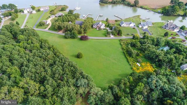 Lot D4 Kingscote Drive, LOTTSBURG, VA 22511 (#VANV101764) :: Shamrock Realty Group, Inc