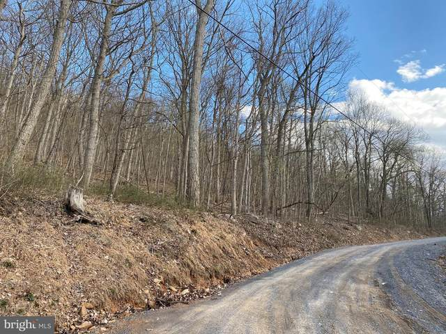 Gamble Road, GREAT CACAPON, WV 25422 (#WVMO118274) :: Shawn Little Team of Garceau Realty