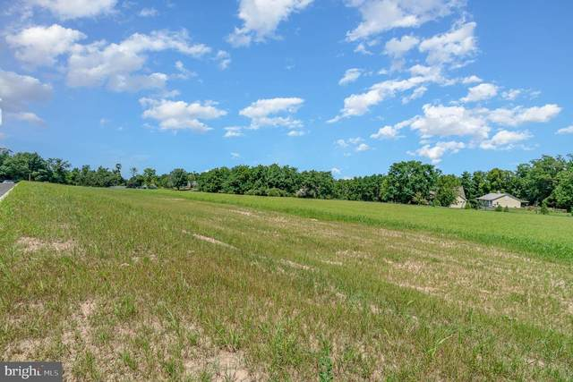 LOT 17 Lightfoot Lane, DILLSBURG, PA 17019 (#PAYK155994) :: TeamPete Realty Services, Inc