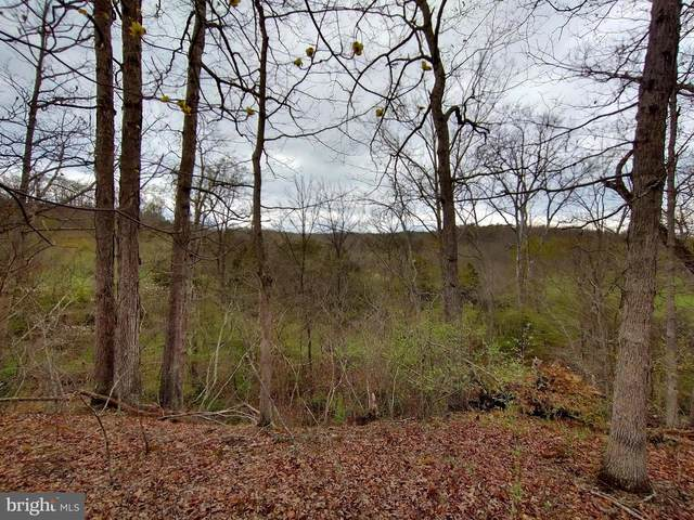 Lot 7 Foxes Hollow Rd, ROMNEY, WV 26757 (#WVHS115512) :: The Mike Coleman Team