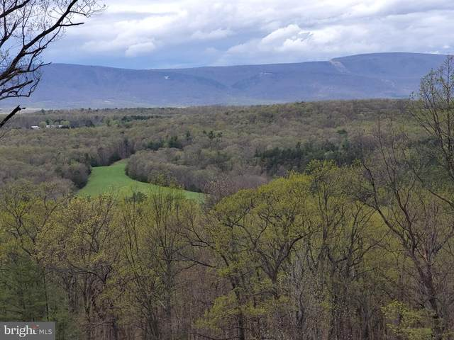 Lot 57 Timberline Ridge Road, STAR TANNERY, VA 22654 (#VASH121944) :: Keller Williams Realty Centre