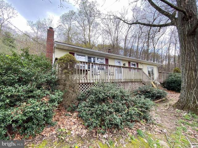 12804 Skiway Avenue, WAYNESBORO, PA 17268 (#PAFL179134) :: Bob Lucido Team of Keller Williams Lucido Agency