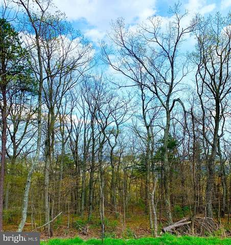 LOT 1 Dogwood Trail, WINCHESTER, VA 22602 (#VAFV163488) :: Talbot Greenya Group