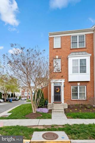 42908 Mccomas Terrace, CHANTILLY, VA 20152 (#VALO435806) :: Coleman & Associates