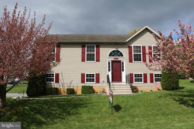 18521 Manassas Drive, HAGERSTOWN, MD 21740 (#MDWA179034) :: The Riffle Group of Keller Williams Select Realtors