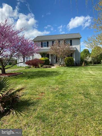 6543 Cottonwood Drive, BEALETON, VA 22712 (#VAFQ170062) :: The Miller Team