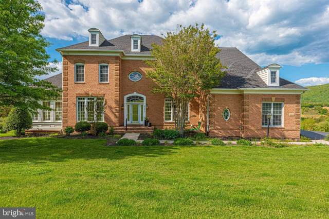 4202 Maryland Court, MIDDLETOWN, MD 21769 (#MDFR280950) :: AJ Team Realty