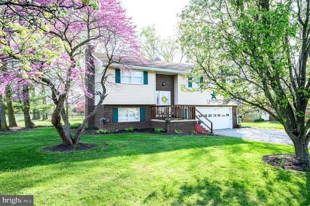 20 Summer Drive, GETTYSBURG, PA 17325 (#PAAD115810) :: Liz Hamberger Real Estate Team of KW Keystone Realty