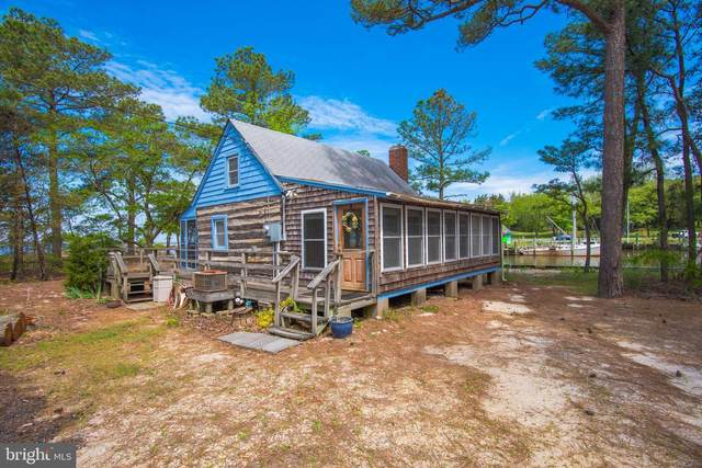 20919 Cedar Hill Parkway, BIVALVE, MD 21814 (#MDWC112658) :: RE/MAX Coast and Country
