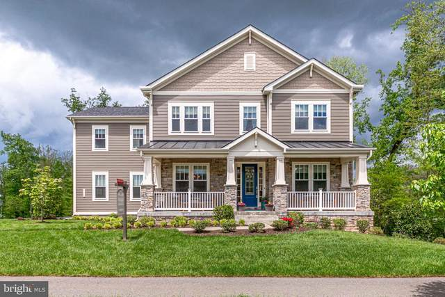 41062 Lyndale Woods Drive, ALDIE, VA 20105 (#VALO436616) :: The Redux Group