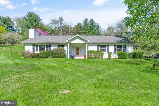 14681 Rose Hollow Lane, WATERFORD, VA 20197 (#VALO437222) :: Bruce & Tanya and Associates