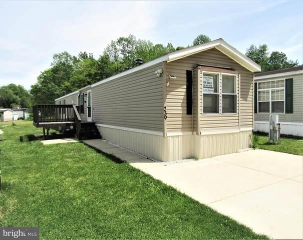 239 Edward Lane, LOTHIAN, MD 20711 (#MDAA466974) :: Dart Homes