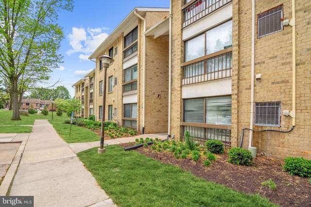 8877 Tamebird Court G, COLUMBIA, MD 21045 (#MDHW294116) :: The Miller Team