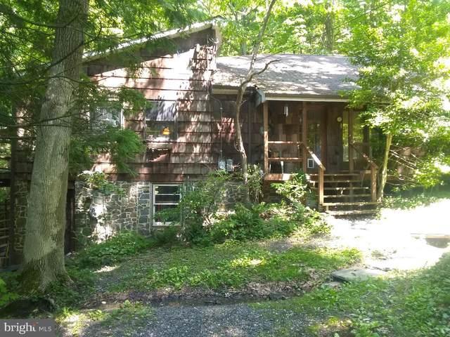 2565 Swamp Creek Road, GREEN LANE, PA 18054 (#PAMC691798) :: Jason Freeby Group at Keller Williams Real Estate
