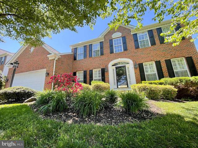 17 Palladio Drive, STAFFORD, VA 22554 (#VAST232048) :: The Riffle Group of Keller Williams Select Realtors