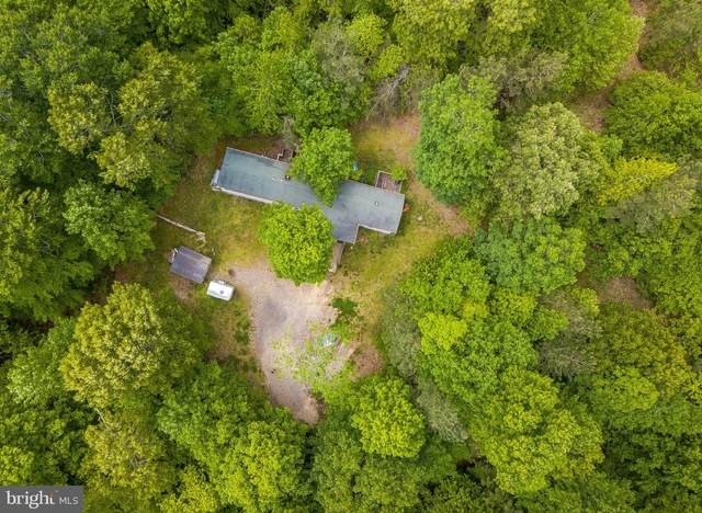 43571 Lifelong Landing Lane, HOLLYWOOD, MD 20636 (#MDSM176174) :: The Maryland Group of Long & Foster Real Estate