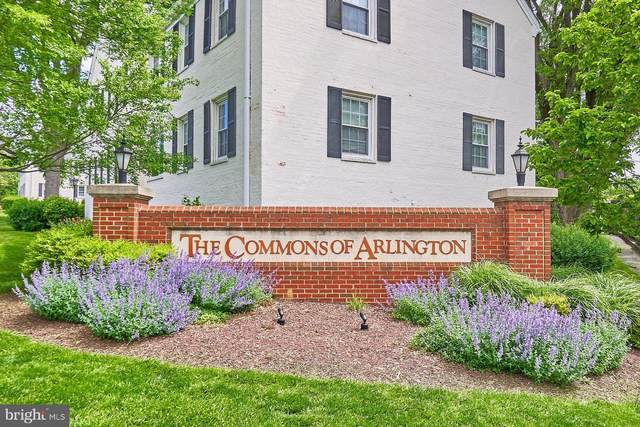 2900 13TH Road S #201, ARLINGTON, VA 22204 (#VAAR181204) :: Keller Williams Realty Centre