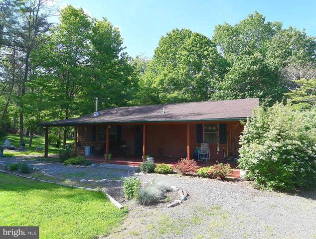 131 Candlewood Lane, GREAT CACAPON, WV 25422 (MLS #WVMO118458) :: PORTERPLUS REALTY