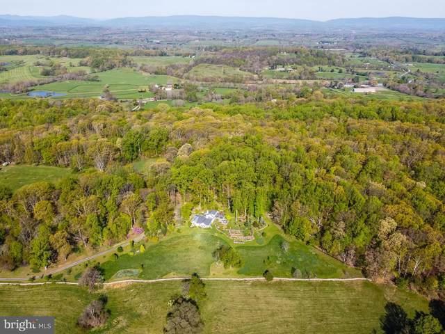 6278 Rock Hill Mill Road, THE PLAINS, VA 20198 (#VAFQ170518) :: The Putnam Group