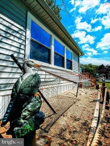 33425 Clover Street #22428, LEWES, DE 19958 (#DESU182810) :: Loft Realty