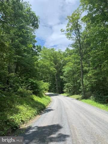 LOT 10 Crooked Run Road, MOUNT JACKSON, VA 22842 (#VASH122254) :: LoCoMusings