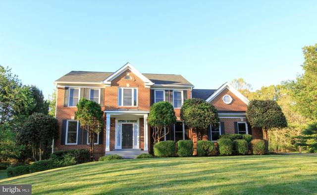 803 Grace Meadow Court, GREAT FALLS, VA 22066 (#VAFX1201200) :: The Redux Group