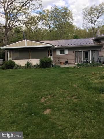 48 Echo Lane, TREMONT, PA 17981 (#PASK135380) :: Ramus Realty Group