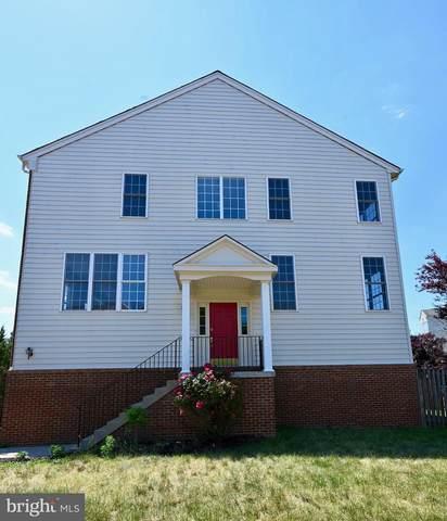 43726 Banshee Heights Terrace, ASHBURN, VA 20148 (#VALO438990) :: Lee Tessier Team