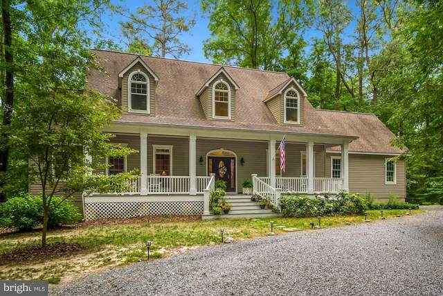 30299 Ward Drive, TRAPPE, MD 21673 (#MDTA141214) :: Bright Home Group