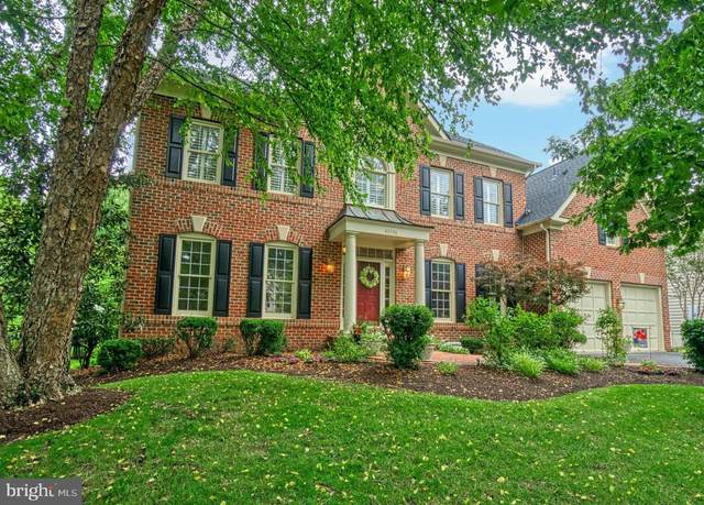 43596 Emerald Dunes Place, LEESBURG, VA 20176 (#VALO439426) :: Charis Realty Group