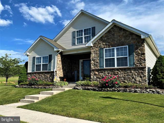 110 Heartwood Drive, FROSTBURG, MD 21532 (#MDAL137104) :: Bowers Realty Group