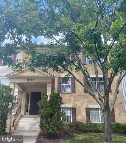 2403 Normandy Square Place #12, SILVER SPRING, MD 20906 (#MDMC760858) :: The Vashist Group