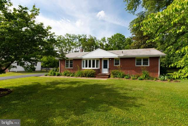 205 Manor Avenue, CHESTERTOWN, MD 21620 (#MDKE118180) :: Bright Home Group
