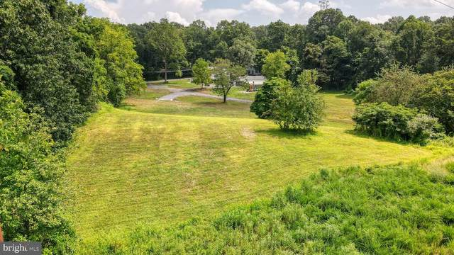 1180 Sand Hill Road, HUMMELSTOWN, PA 17036 (#PADA133860) :: The Joy Daniels Real Estate Group