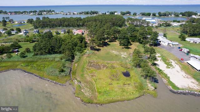 Old House Point, FISHING CREEK, MD 21634 (#MDDO127504) :: AJ Team Realty
