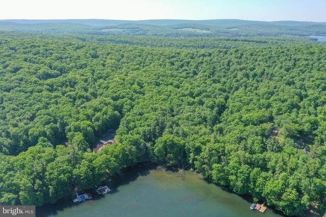 Lot 29 NSE Sawmill Hollow Rd (Thousand Acres), SWANTON, MD 21561 (#MDGA135344) :: The Riffle Group of Keller Williams Select Realtors