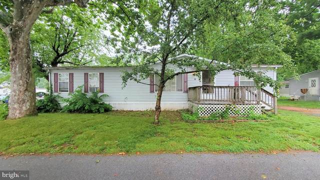 1 Cherry Avenue, HIGHSPIRE, PA 17034 (#PADA133948) :: TeamPete Realty Services, Inc