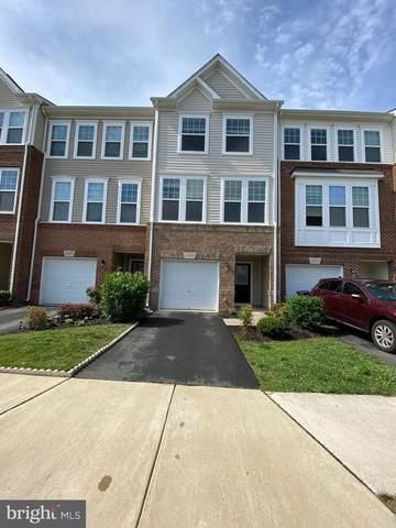 43288 Novi Terrace, ASHBURN, VA 20147 (#VALO440252) :: Shamrock Realty Group, Inc