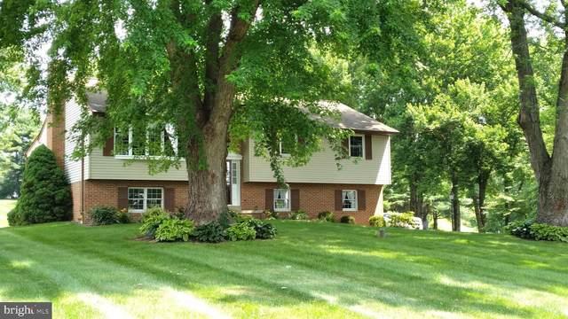 181 Run Valley Road, CONESTOGA, PA 17516 (#PALA183814) :: Flinchbaugh & Associates