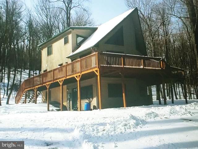 1428 Lake Lane, POCONO LAKE, PA 18347 (#PAMR107662) :: Jim Bass Group of Real Estate Teams, LLC