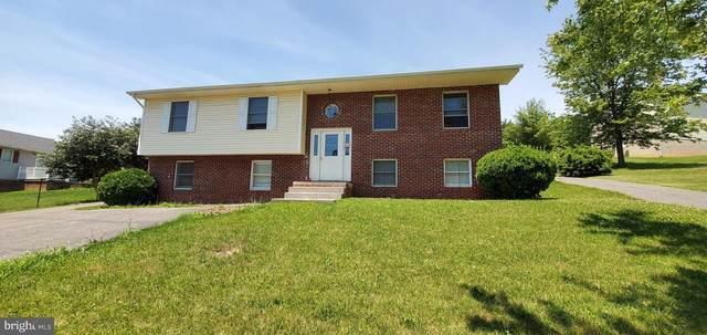 453 Varghese Drive, STRASBURG, VA 22657 (#VASH122584) :: Revol Real Estate