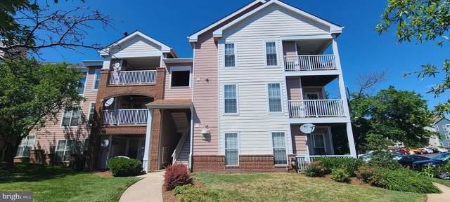 20991 Timber Ridge Terrace #201, ASHBURN, VA 20147 (#VALO441562) :: Eng Garcia Properties, LLC