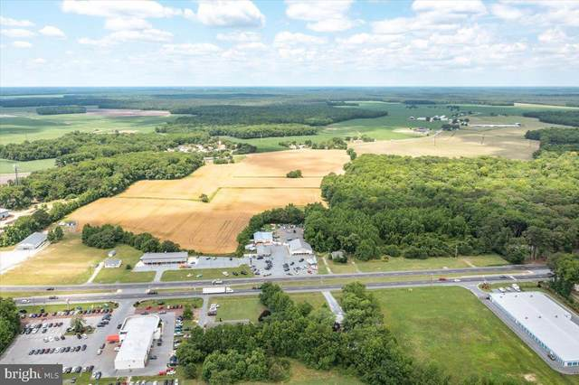 36992 Dupont Boulevard, SELBYVILLE, DE 19975 (#DESU185186) :: Colgan Real Estate