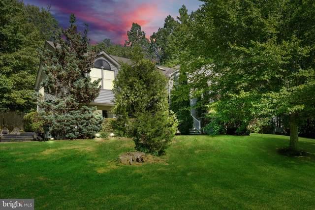 21 Argyle Hills Drive, FREDERICKSBURG, VA 22405 (#VAST233558) :: The Sky Group