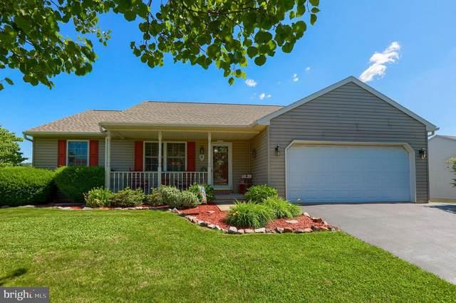 29 Cheery Lane, DENVER, PA 17517 (#PALA184072) :: Shamrock Realty Group, Inc