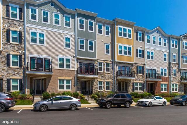 24574 Rosebay Terrace, ALDIE, VA 20105 (#VALO441774) :: RE/MAX Advantage Realty
